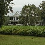 Bilde fra Springfield Bed and Breakfast