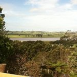 Dargaville Holiday Park照片