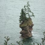 Flower pot rock