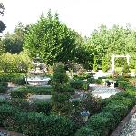 Some of the gardens