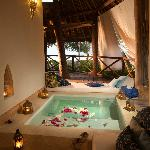 Plunge Pool at Ocean & Poolfront Bungalows