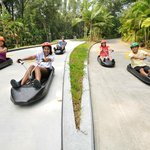 Skyline Luge Sentosa