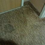 Multiple carpet stains create negative impression of room