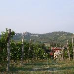 Photo of Agriturismo La Mussia