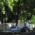 Big Foot RV Park & Cabinsの写真
