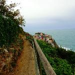 View of Manarola, from one of the trails.