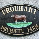 Welcome to Drumbuie Farm