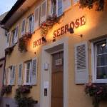 Hotel Seerose Lindau