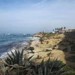  La Jolla Cuvier Park/Coast Walk beach and bluffs near cottage.