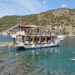 Cherry Tree Boat Tours / Private Day Tours