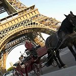 ‪Paris Horse and Carriage Rides‬