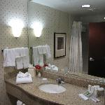 Φωτογραφία: Hilton Garden Inn Houston Northwest