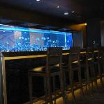 Gorgeous fish tank that separates the bar & reception