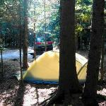 Typical Wilderness Campground Tent Site