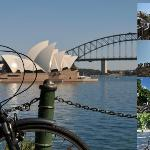 Annawombat Bike Tours Sydney