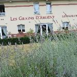 Hotel Les Grains d'Argent