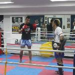 Cobra Muay Thai Abu Dhabi