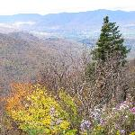 Valley Views with Fall Foliage