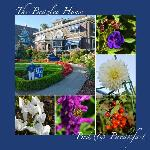 These are the pics I took while staying at the Beazley House B&B - Peake Photography & Design