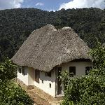Bwindi Lodge