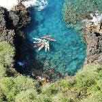 Ocean Safaris Kayak Adventures