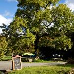  Stop in for a cuppa and a slice of cake.... at YHA Borrowdale