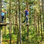 Go Ape at Black Park Uxbridge