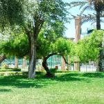 Jardin el Harti