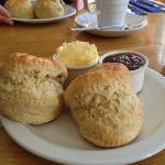  The cream tea - 2 scones and a tea.