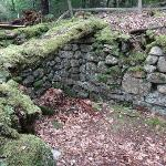 The old wine cellar was the only foundation that was still easy to recognize