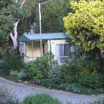 Foto de BIG4 Badger Creek Holiday Park