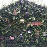 Birdhouses on the outside of the building.