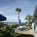 Daytona Shores Inn and Suites의 사진