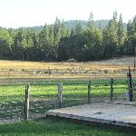 Foto de Big Creek Meadow Ranch