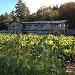 Joseph Cellars Winery