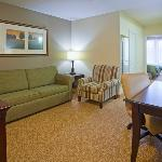  CountryInn&amp;Suites RedWing Suite