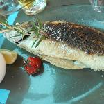 Sea Bass served with basmati rice