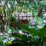 Front garden area with fish ponds