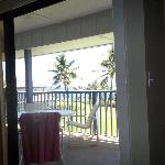  View out of family room, through Lanai