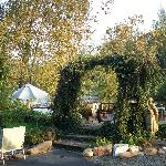  Campfire pit, Ivy arch / entry to the river front