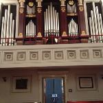  one of only 2 types of this organ in the country. The other is in ATL.