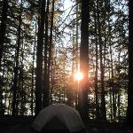 Glacier National Park Campgroundsの写真