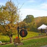 Cartecay Vineyards