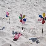  My pinwheels