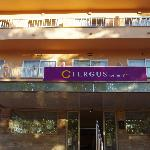 Fergus Geminis