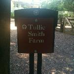 Tullie Smith Farm