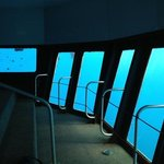 the underwater viewing deck