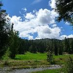 Big Creek Meadow