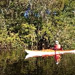  Kayaking the Withlacoochee river Florida