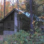 Cabins in the Pinesの写真